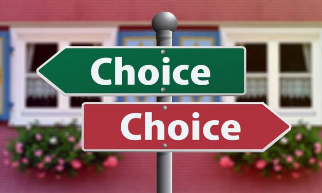 Life Insurance Leads – What are your choices for success?